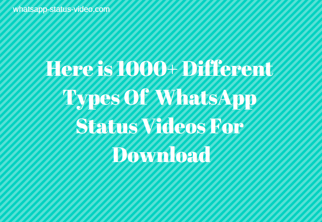 WhatsApp Status Video Download, WhatsApp Status Video